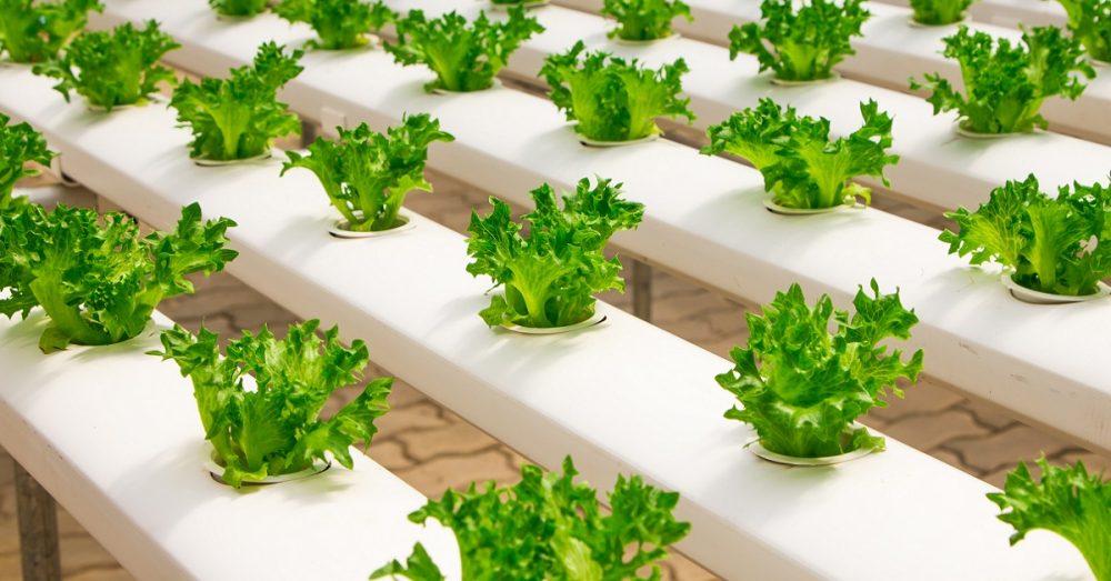 smart farming applications