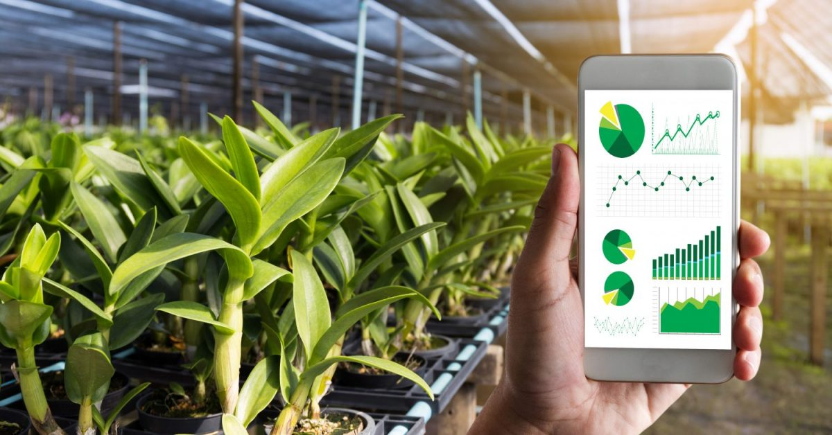 applications of blockchain in agriculture
